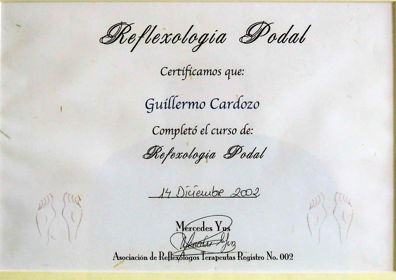 Diplomas Guille_page-0009